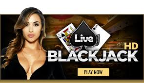 HD Casino Websites